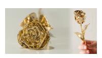 Rosen er en af de mest elskede blomster og er et smukt symbol for kærlighed. Rosen er en luksuriøs blomst og der findes ingen, som ikke ville elske at få en rose fra den de elsker. Overrask din elskede med en smuk gave - en rigtig rose forgyldt med 24 karat guld!