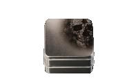 silver_skull_case