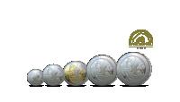 Silver Sovereign 2020  sæt med 5 sovereigns - bestil dit møntsæt i dag