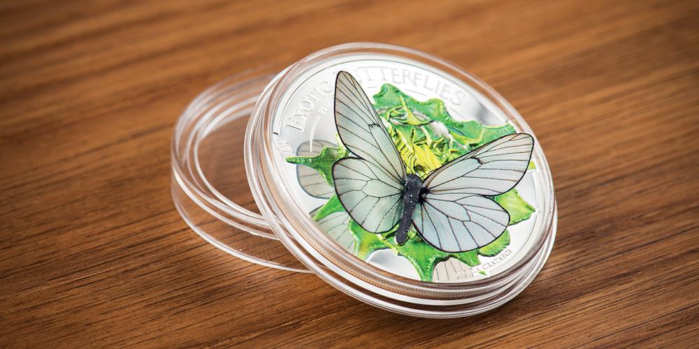 Butterfly-capsule_www